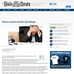 Stress causes brain shrinkage | Yale Daily News