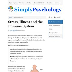 Stress, Illness and the Immune System