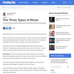 The Types of Stress