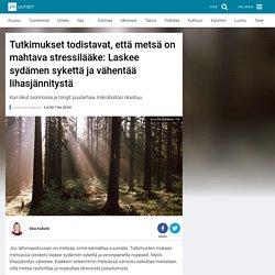 Tutkimukset todistavat, että metsä on mahtava stressilääke: Laskee sydämen sykettä ja vähentää lihasjännitystä