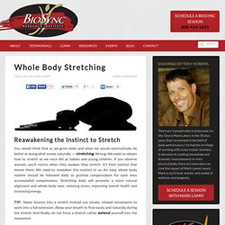 Whole Body Stretching Routine