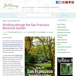 Strolling through the San Francisco Botanical Garden - Gardening Know How's Blog
