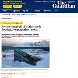 *****Arctic stronghold of world's seeds flooded after permafrost melts (seedbank)