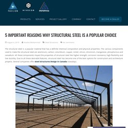 5 Important Reasons Why Structural Steel Is a Popular Choice - Pavilion Structures