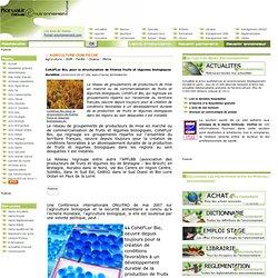 CohéFLor Bio, pour la structuration de filières fruits et légume