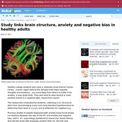 Study links brain structure, anxiety and negative bias in healthy adults