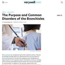 The Structure, Function, and Disorders of Bronchioles