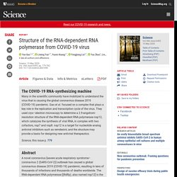 Structure of the RNA-dependent RNA polymerase from COVID-19 virus
