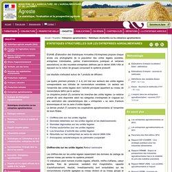 Statistiques structurelles sur les entreprises agroalimentaires