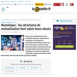 Numérique : les structures de mutualisation font valoir leurs atouts