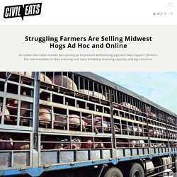 Struggling Farmers Are Selling Midwest Hogs Ad Hoc and Online