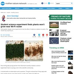 Student science experiment finds plants won't grow near Wi-Fi router