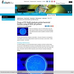 TU Delft: Team of TU Delft students prints bacterial biofilm using K'NEX 3D printer