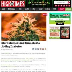 More Studies Link Cannabis to Aiding Diabetes