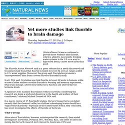 New US Government Study on Fluoride Damage to Brain
