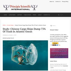 Study: Chinese Cargo Ships Dump 73% of Trash in Atlantic Ocean