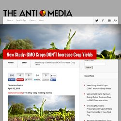 New Study: GMO Crops DON'T Increase Crop Yields