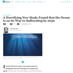 Study Finds that Ocean Could Suffocate by 2030