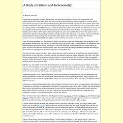 A Study of Lichens and Lichenometry