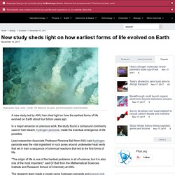 New study sheds light on how earliest forms of life evolved on Earth