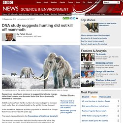 DNA study suggests hunting did not kill off mammoth