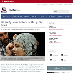UA Study: Your Brain Sees Things You Don't
