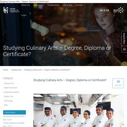 Studying Culinary Arts – Degree, Diploma or Certificate?