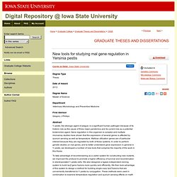 IOWA STATE UNIVERSITY - 2012 - Thèse en ligne : New tools for studying mal gene regulation in Yersinia pestis