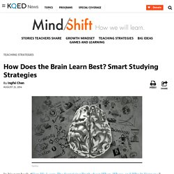 How Does the Brain Learn Best? Smart Studying Strategies