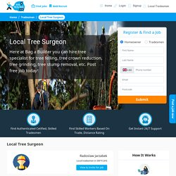 Tree Stump Removal – Local Tree Surgeon Near You in UK