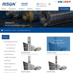 Manufacturer of Full Range Solar Pumping System