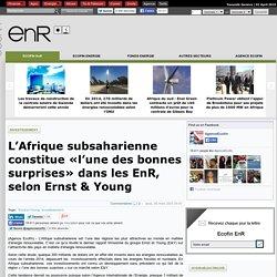 L'Afrique subsaharienne constitue «l'une des bonnes surprises» dans les EnR, selon Ernst & Young