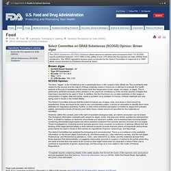 FDA - 1973 - Définition : Select Committee on GRAS Substances (SCOGS) Opinion: Brown algae
