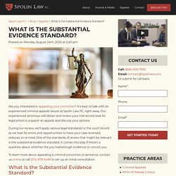 What is the Substantial Evidence Standard?