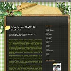 Substitut de BLANC DE BALEINE