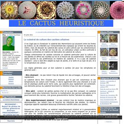 Le substrat de culture des cactées urbaines - Le Cactus Heuristique