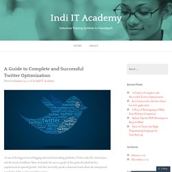 A Guide to Complete and Successful Twitter Optimization – Indi IT Academy