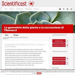 Le geometrie delle piante e la successione di Fibonacci - Scientificast