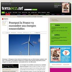 Pourquoi la France va succomber aux énergies renouvelables