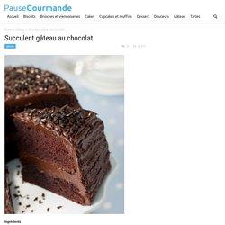 Succulent gâteau au chocolat