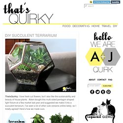 DIY Succulent Terrarium on That's Quirky