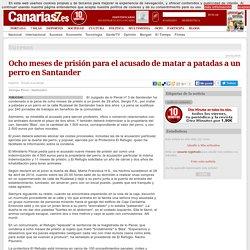 Sucesos. Ocho meses de prisión para el acusado de matar a patadas a un perro en Santander