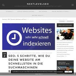 5 Schritte, wie du deine Website am schnellsten in die Suchmaschinen bekommst - nextlevelseo.de