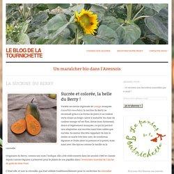Le blog de la Tournichette