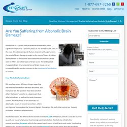 Are You Suffering from Alcoholic Brain Damage?
