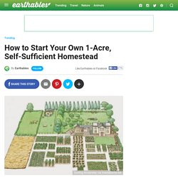 How to Start Your Own 1-Acre, Self-Sufficient Homestead - Earthables