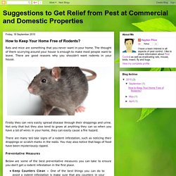Tips to Keep Your Home Free of Rodent