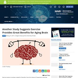 Another Study Suggests Exercise Provides Great Benefits for Aging Brain