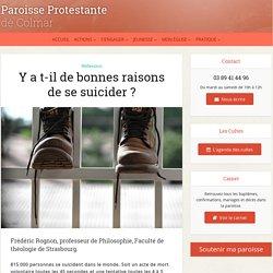 Y a t-il de bonnes raisons de se suicider ?