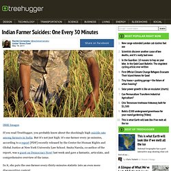 Indian Farmer Suicides: One Every 30 Minutes